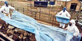Comienza la descontaminación del polígono Condor, en Amorebieta