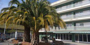 Santurtzi realizará obras en la residencia de Nuestra Señora de Begoña
