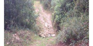 Amorebieta licita las obras de abastecimiento de agua en Kimera